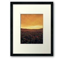 the stormyard  Framed Print