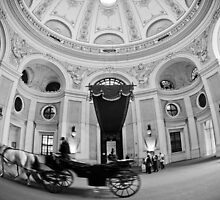 Vienna by Andrew Leitch