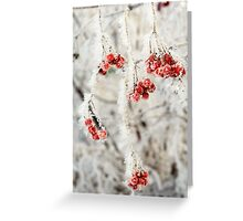 Frozen Rowan 2 Greeting Card