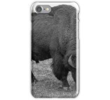 American Bison Feeding iPhone Case/Skin