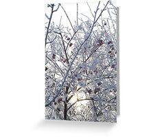 Frozen Rowan 6 Greeting Card