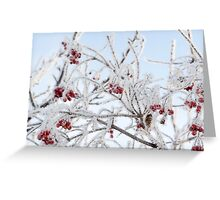 Frozen Rowan 8 Greeting Card