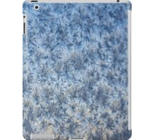 Winter frosted glass 3 iPad Case/Skin