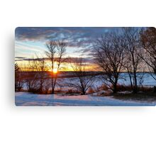 Winter's Palette Canvas Print