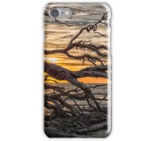 driftwood beach iPhone Case/Skin