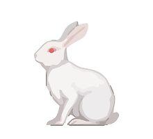 Rabbit Apple / WhatsApp Emoji by emoji