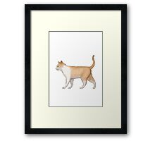 Cat Apple / WhatsApp Emoji Framed Print