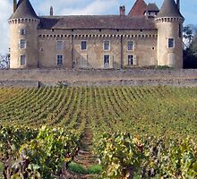 Chateau de Rully by phil decocco
