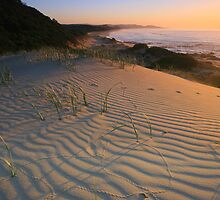 Dunes of Croajingolong. by Donovan wilson
