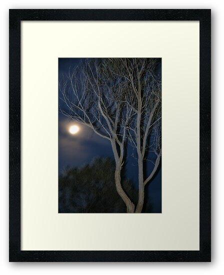Quilpie Moon © Vicki Ferrari by Vicki Ferrari