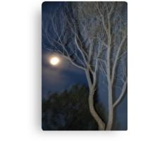 Quilpie Moon © Vicki Ferrari Metal Print