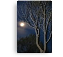 Quilpie Moon © Vicki Ferrari Canvas Print