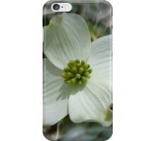 Dogwood Digital  iPhone Case/Skin