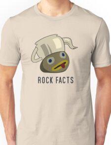 Over the Garden Walls: Rock Facts T-Shirt