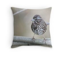 Song Sparrow Throw Pillow
