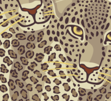 Leopards Sticker