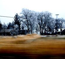 Drive-By Farm by JVBurnett