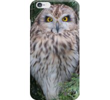 British Owls iPhone Case/Skin