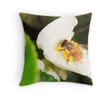 Bee on white Throw Pillow