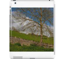 A Cotswold scene iPad Case/Skin