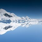 Reflecting the world by David Burren