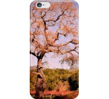 Beautiful view at Fess Parker iPhone Case/Skin
