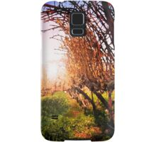 Vines at Fess Parker Winery Samsung Galaxy Case/Skin