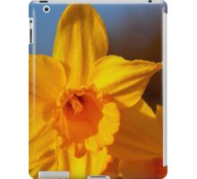 Good Morning Spring iPad Case/Skin