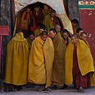 Sakya II by David Reid