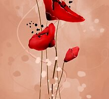 Red poppies by foldyart