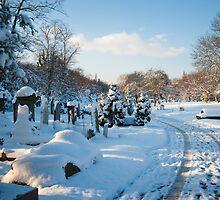 West Norwood Graveyard Winter Vista by DonDavisUK