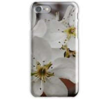 The First Spring Pear Blossoms iPhone Case/Skin
