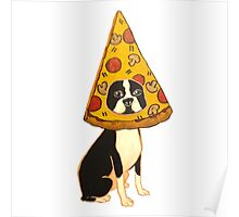 Boston Terrier Pizza Dog Poster