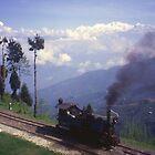 Steam Engine on Darjeeling Railway, India. by Peter Stephenson