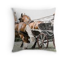 Harmony In Motion Throw Pillow