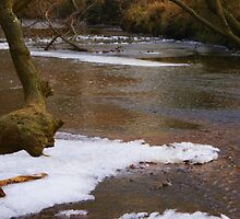 River Ice by M R Cooper