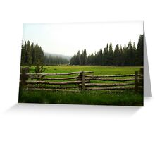 Green Meadow of Sequoia Greeting Card