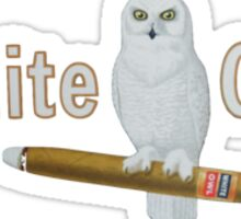 White Owl Sticker