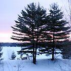 Early Morning Walk by Shelby  Stalnaker Bortone
