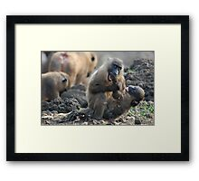 Fight Me Framed Print