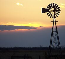 Windmill Sunset Silhouette by Jillian Johnston