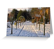 Snow Scene~ Greeting Card