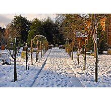 Snow Scene~ Photographic Print
