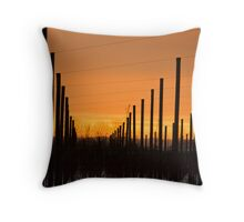 Sunset in coutryside Throw Pillow