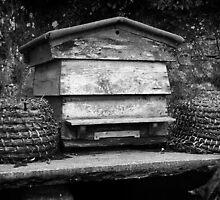 Beehive by Gordon Brebner