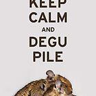 Keep Calm and Degu Pile by lmaiphotography