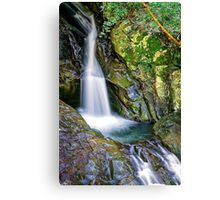 Mt.Cougal Cascade.... Canvas Print