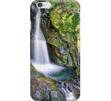 Mt.Cougal Cascade.... iPhone Case/Skin
