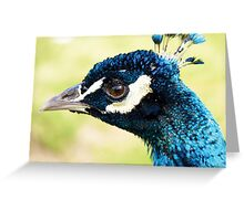 Peacock's New Crown Greeting Card