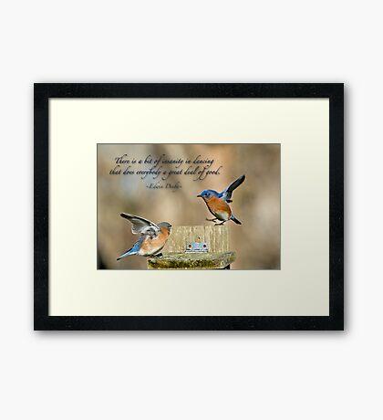 Dancing Bluebirds Framed Print